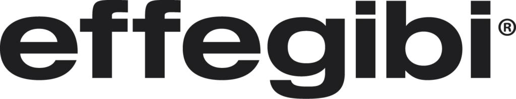 efegibi_logo